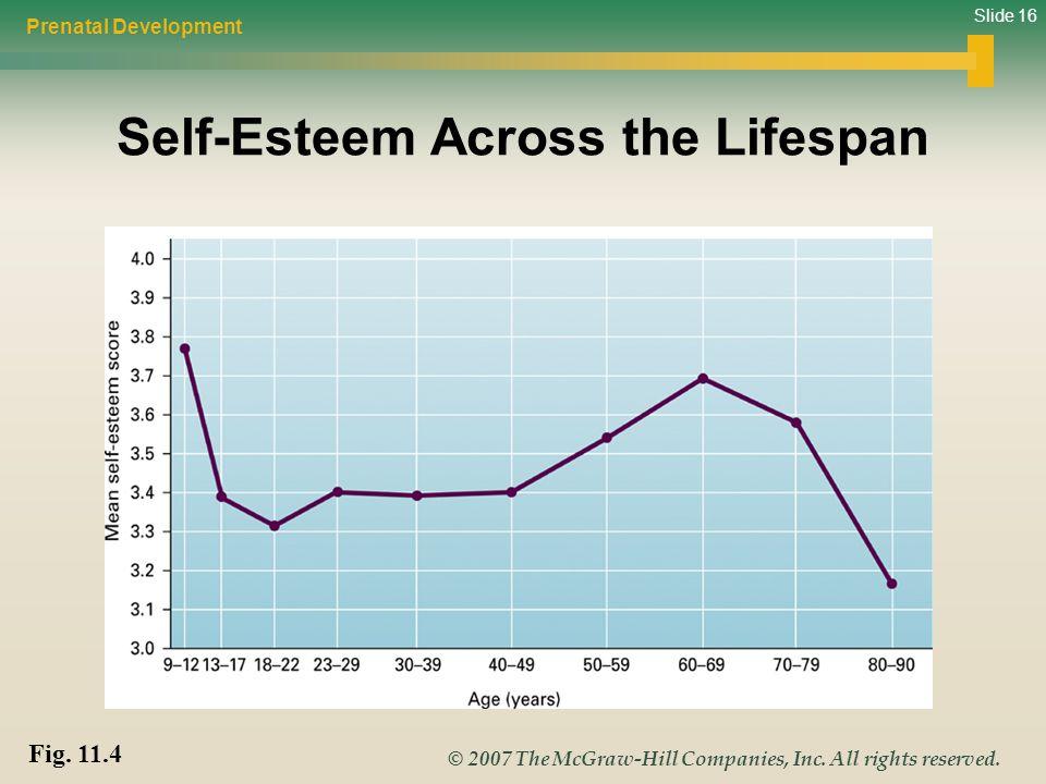 Slide 16 © 2007 The McGraw-Hill Companies, Inc. All rights reserved. Self-Esteem Across the Lifespan Prenatal Development Fig. 11.4