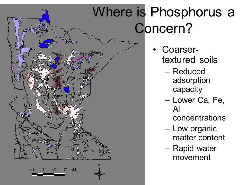 Where is Phosphorus a Concern? Coarser- textured soils –Reduced adsorption capacity –Lower Ca, Fe, Al concentrations –Low organic matter content –Rapi