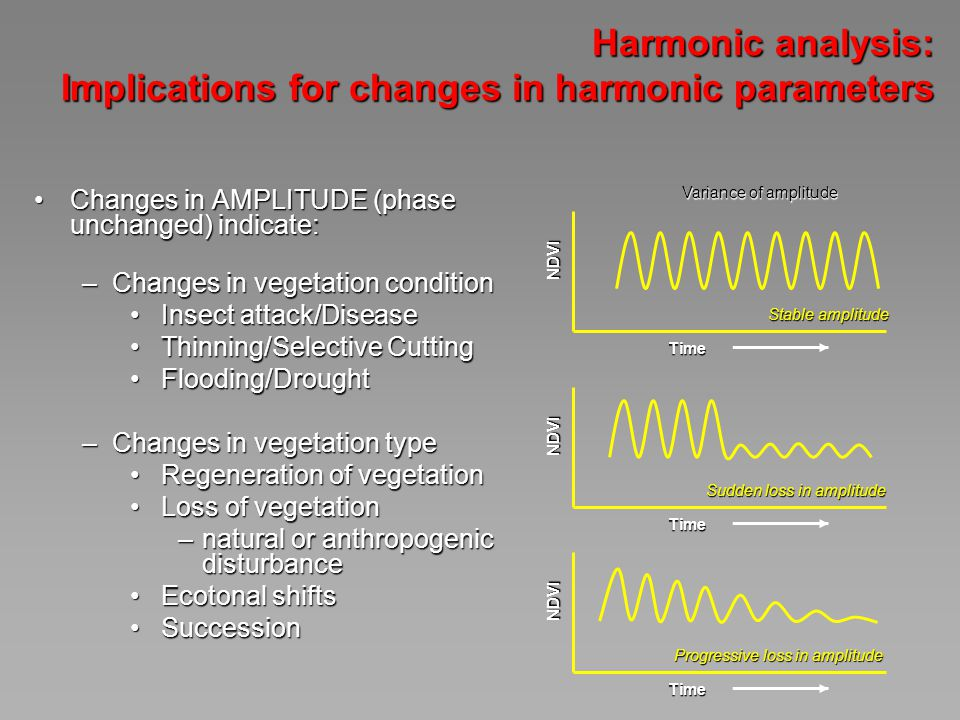 Harmonic analysis: Implications for changes in harmonic parameters Changes in AMPLITUDE (phase unchanged) indicate:Changes in AMPLITUDE (phase unchanged) indicate: –Changes in vegetation condition Insect attack/Disease Insect attack/Disease Thinning/Selective Cutting Thinning/Selective Cutting Flooding/Drought Flooding/Drought –Changes in vegetation type Regeneration of vegetation Regeneration of vegetation Loss of vegetation Loss of vegetation –natural or anthropogenic disturbance Ecotonal shifts Ecotonal shifts Succession Succession Variance of amplitude NDVI Time Stable amplitude NDVI Time Sudden loss in amplitude NDVI Time Progressive loss in amplitude