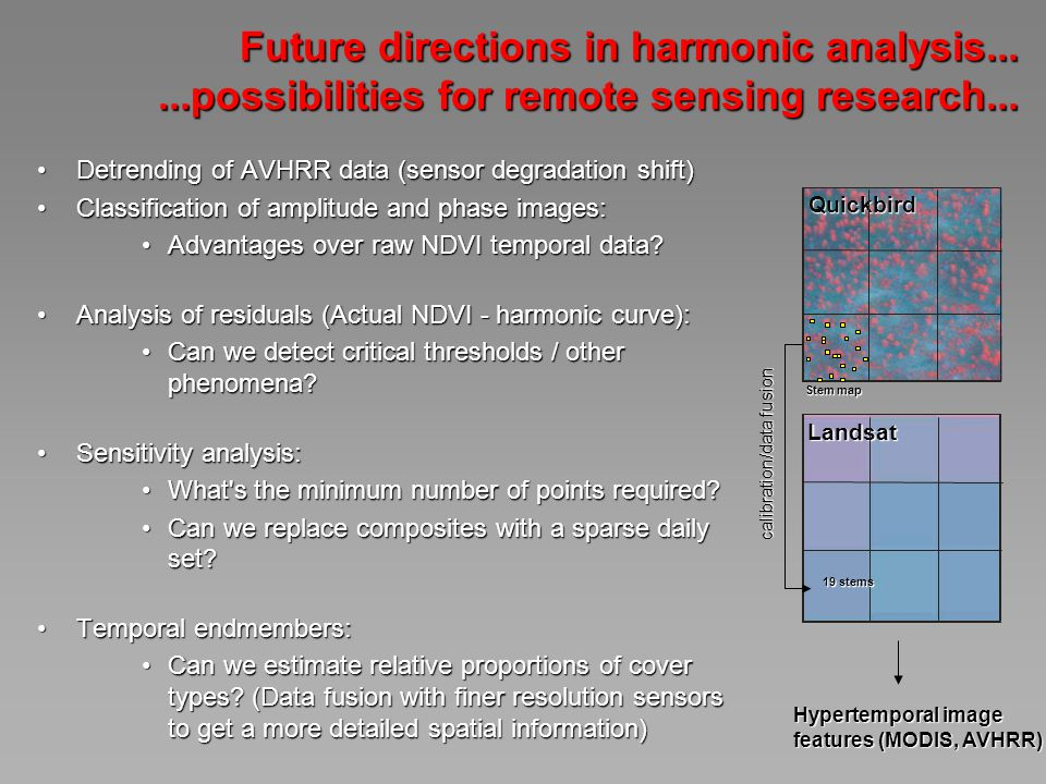 Future directions in harmonic analysis......possibilities for remote sensing research...