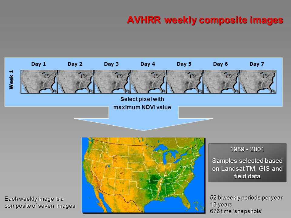 AVHRR weekly composite images Week 1 Day 1Day 2Day 3Day 4Day 5Day 6Day 7 Select pixel with maximum NDVI value 52 biweekly periods per year 13 years 676 time snapshots Each weekly image is a composite of seven images 1989 - 2001 Samples selected based on Landsat TM, GIS and field data