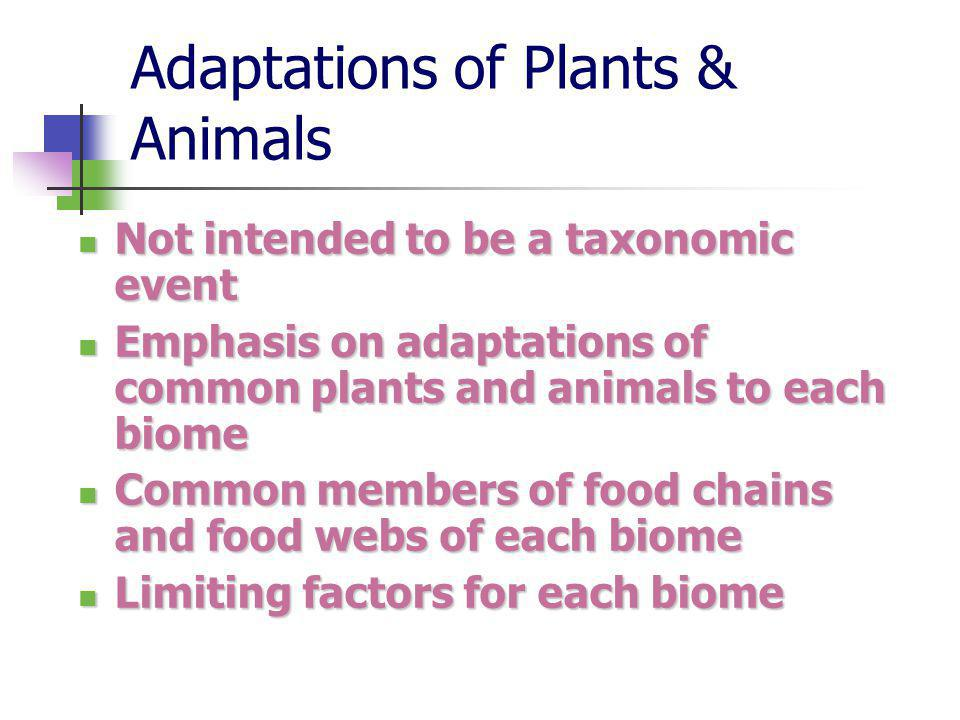 Adaptations of Plants & Animals Not intended to be a taxonomic event Not intended to be a taxonomic event Emphasis on adaptations of common plants and animals to each biome Emphasis on adaptations of common plants and animals to each biome Common members of food chains and food webs of each biome Common members of food chains and food webs of each biome Limiting factors for each biome Limiting factors for each biome