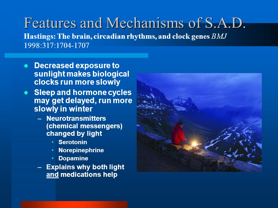 Features and Mechanisms of S.A.D. Features and Mechanisms of S.A.D. Hastings: The brain, circadian rhythms, and clock genes BMJ 1998:317:1704-1707 Dec