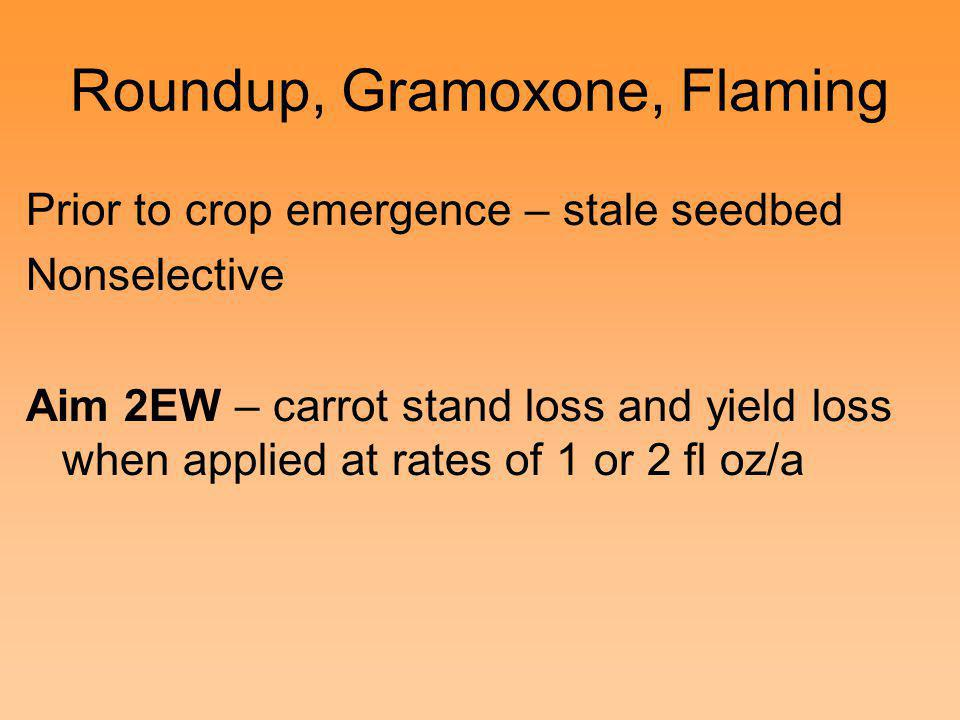 Roundup, Gramoxone, Flaming Prior to crop emergence – stale seedbed Nonselective Aim 2EW – carrot stand loss and yield loss when applied at rates of 1