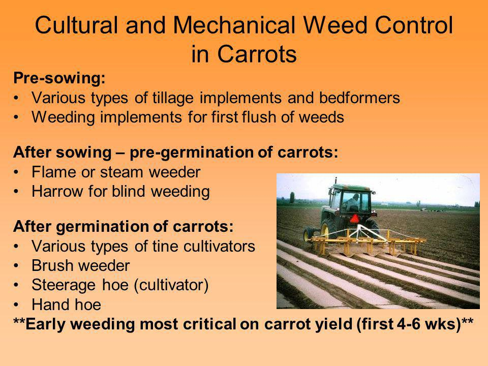 Cultural and Mechanical Weed Control in Carrots Pre-sowing: Various types of tillage implements and bedformers Weeding implements for first flush of w