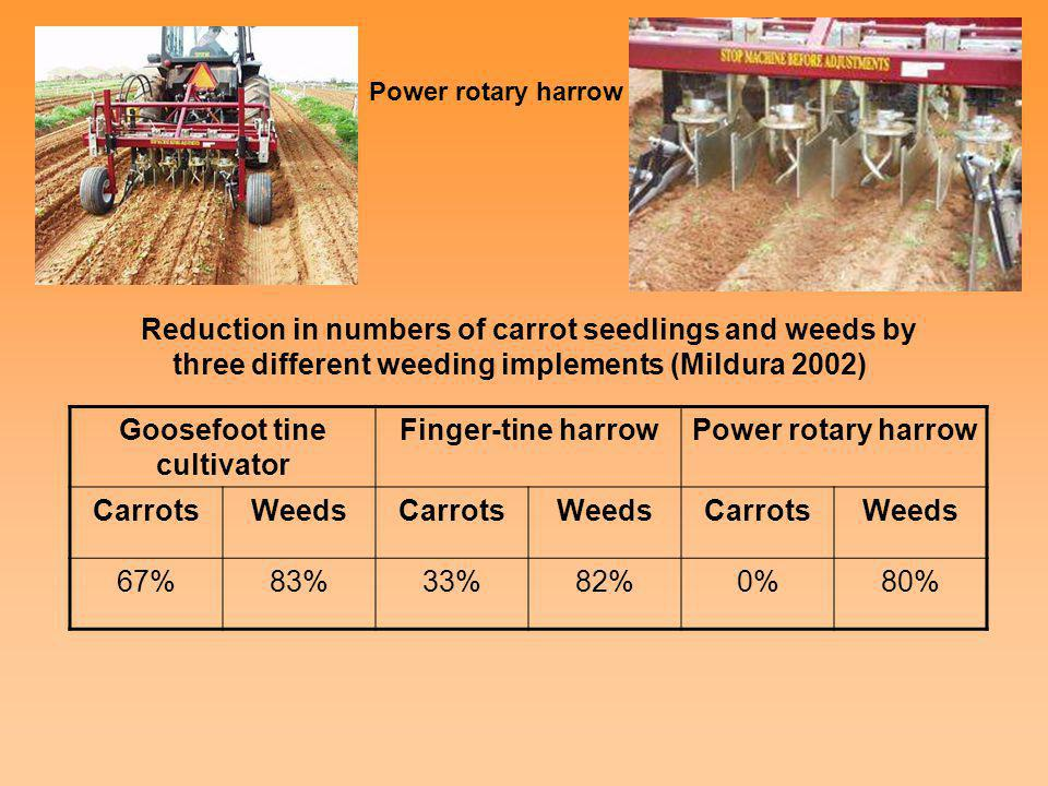 Reduction in numbers of carrot seedlings and weeds by three different weeding implements (Mildura 2002) Goosefoot tine cultivator Finger-tine harrowPo