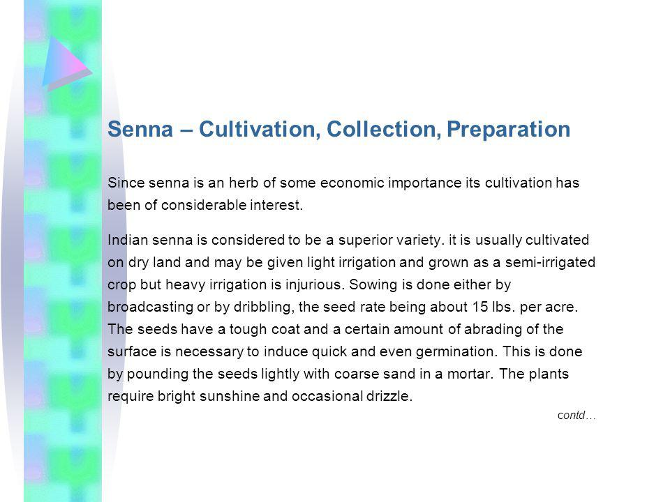 Senna – Cultivation, Collection, Preparation Since senna is an herb of some economic importance its cultivation has been of considerable interest.