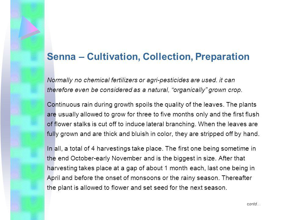 Senna – Cultivation, Collection, Preparation Normally no chemical fertilizers or agri-pesticides are used.