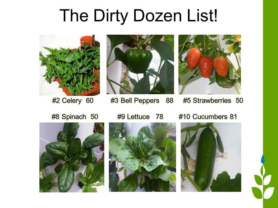 The Dirty Dozen List!