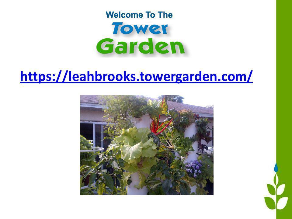 https://leahbrooks.towergarden.com/
