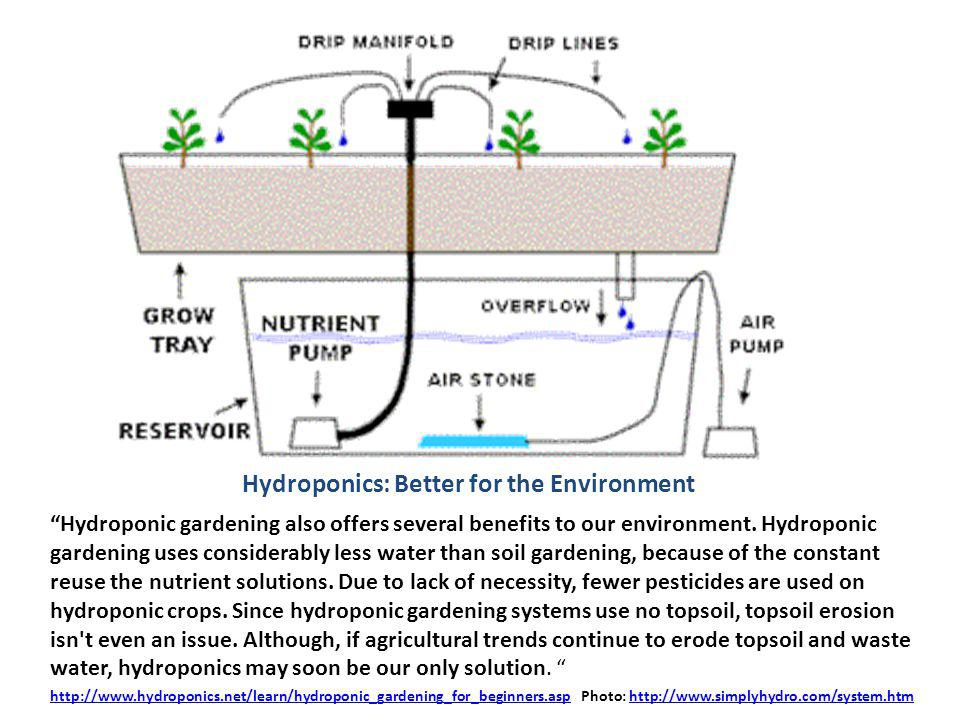 Hydroponics: Better for the Environment Hydroponic gardening also offers several benefits to our environment.