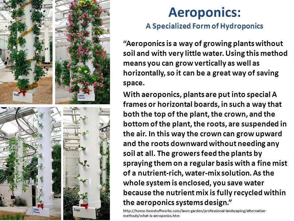 Aeroponics: A Specialized Form of Hydroponics Aeroponics is a way of growing plants without soil and with very little water.