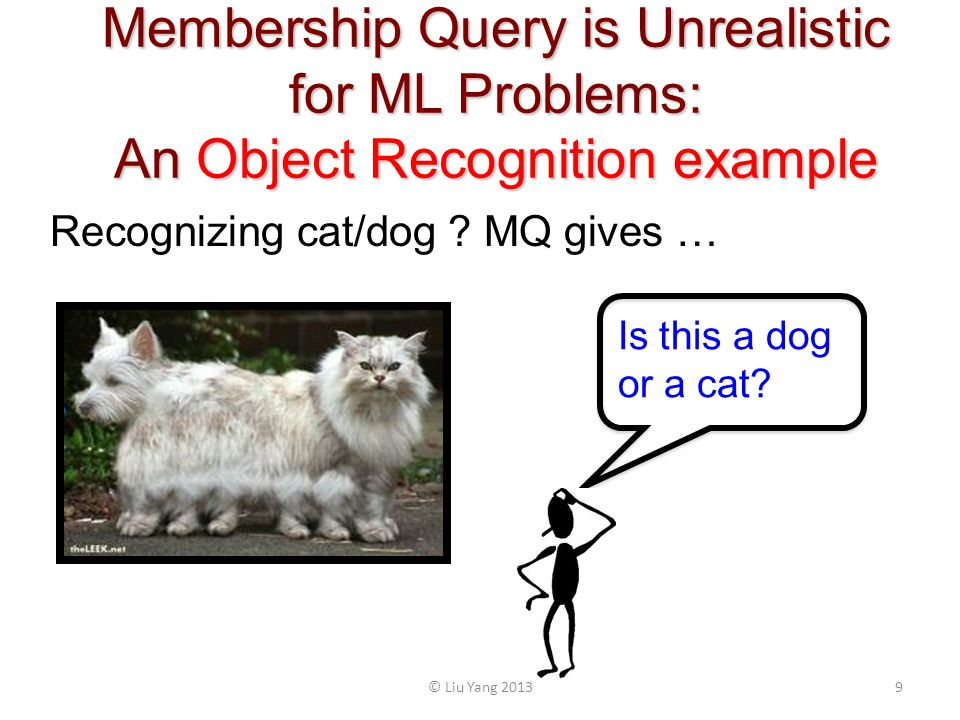 Membership Query is Unrealistic for ML Problems: An Object Recognition example Recognizing cat/dog .
