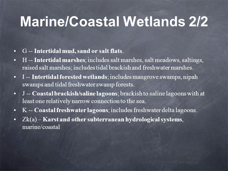 Marine/Coastal Wetlands 2/2 G -- Intertidal mud, sand or salt flats.