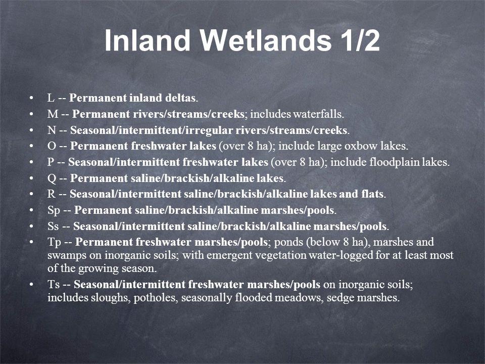 Inland Wetlands 1/2 L -- Permanent inland deltas. M -- Permanent rivers/streams/creeks; includes waterfalls. N -- Seasonal/intermittent/irregular rive