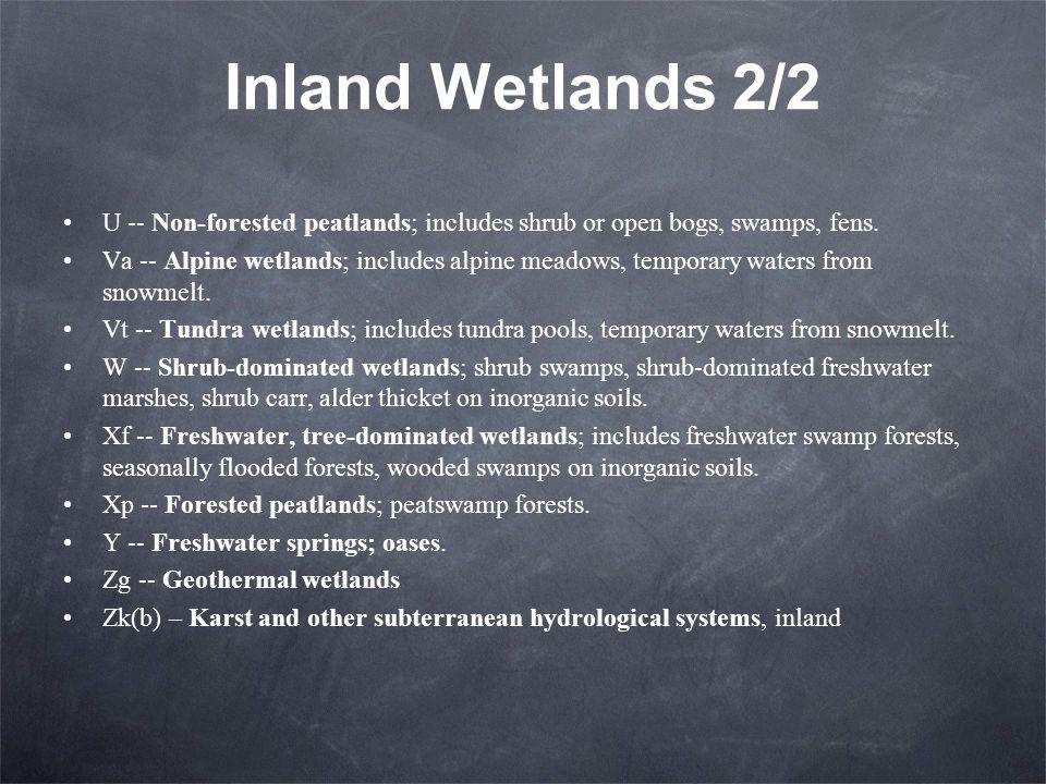 Inland Wetlands 2/2 U -- Non-forested peatlands; includes shrub or open bogs, swamps, fens. Va -- Alpine wetlands; includes alpine meadows, temporary