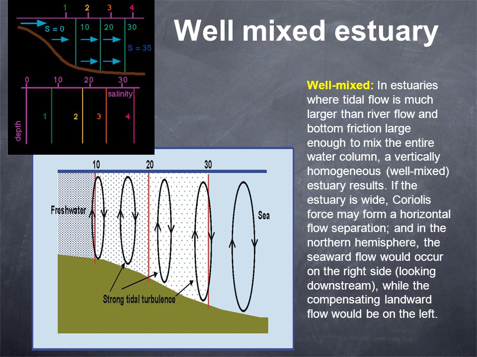 Well mixed estuary Well-mixed: In estuaries where tidal flow is much larger than river flow and bottom friction large enough to mix the entire water column, a vertically homogeneous (well-mixed) estuary results.