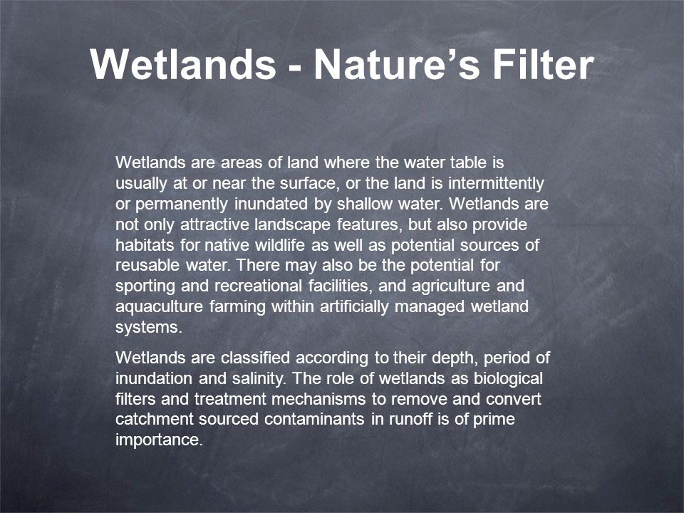 Wetlands - Natures Filter Wetlands are areas of land where the water table is usually at or near the surface, or the land is intermittently or permane