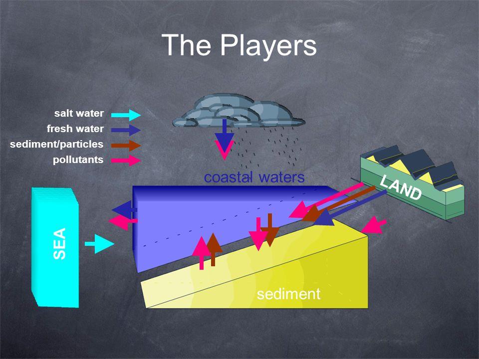 LAND sediment coastal waters SEA salt water fresh water sediment/particles pollutants The Players