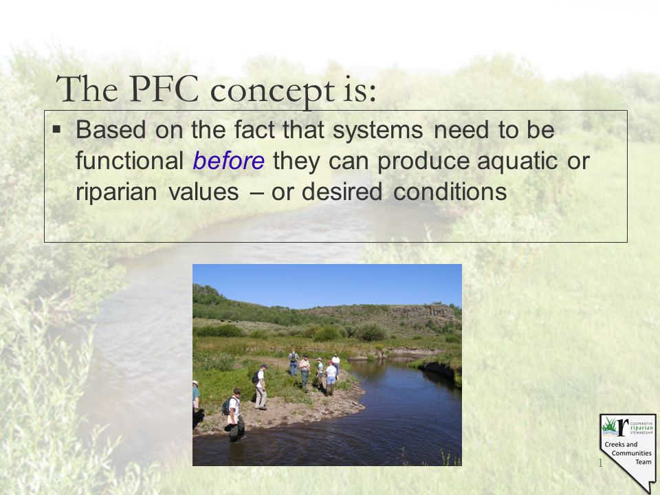 1 The PFC concept is: §Based on the fact that systems need to be functional before they can produce aquatic or riparian values – or desired conditions