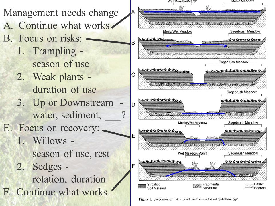 Management needs change A.Continue what works B.Focus on risks: 1.Trampling - season of use 2.Weak plants - duration of use 3.Up or Downstream - water, sediment, ___.