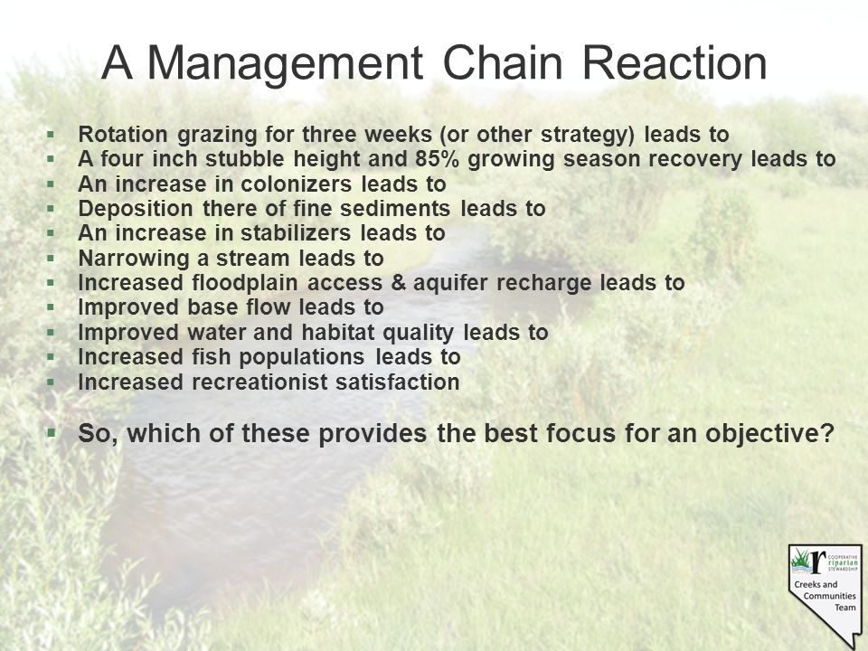 A Management Chain Reaction §Rotation grazing for three weeks (or other strategy) leads to §A four inch stubble height and 85% growing season recovery leads to §An increase in colonizers leads to §Deposition there of fine sediments leads to §An increase in stabilizers leads to §Narrowing a stream leads to §Increased floodplain access & aquifer recharge leads to §Improved base flow leads to §Improved water and habitat quality leads to §Increased fish populations leads to §Increased recreationist satisfaction §So, which of these provides the best focus for an objective
