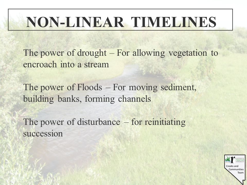 NON-LINEAR TIMELINES The power of drought – For allowing vegetation to encroach into a stream The power of Floods – For moving sediment, building banks, forming channels The power of disturbance – for reinitiating succession