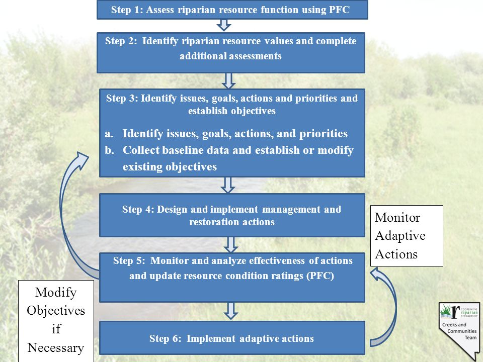 PFC in Documents Communicating with stakeholders Purpose and need Description of the existing environment Selection of alternatives Effects of proposed actions Planning monitoring Criteria for adapting management