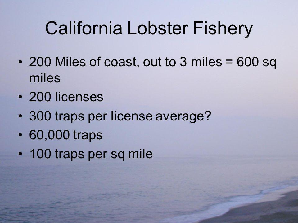 California Lobster Fishery 200 Miles of coast, out to 3 miles = 600 sq miles 200 licenses 300 traps per license average.