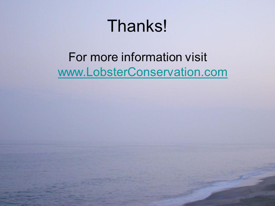 Thanks! For more information visit www.LobsterConservation.com www.LobsterConservation.com