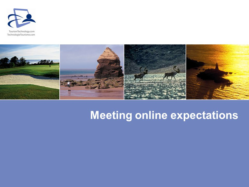 Meeting online expectations