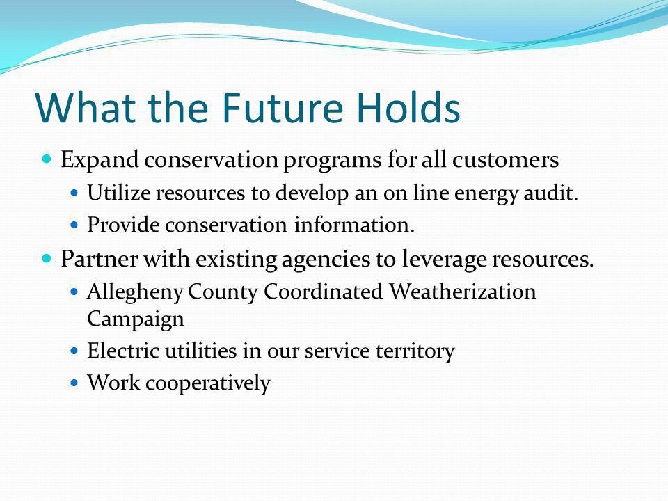 Low-cost Solutions Copyright 2010 Conservation Consultants, Inc.