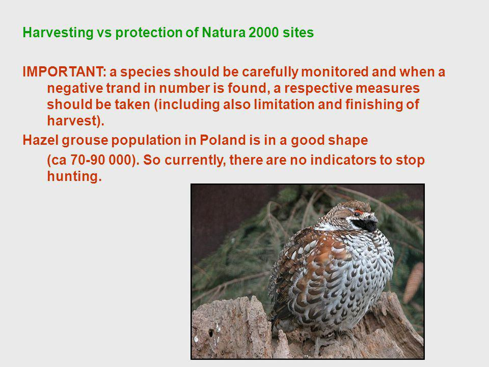 Harvesting vs protection of Natura 2000 sites IMPORTANT: a species should be carefully monitored and when a negative trand in number is found, a respective measures should be taken (including also limitation and finishing of harvest).