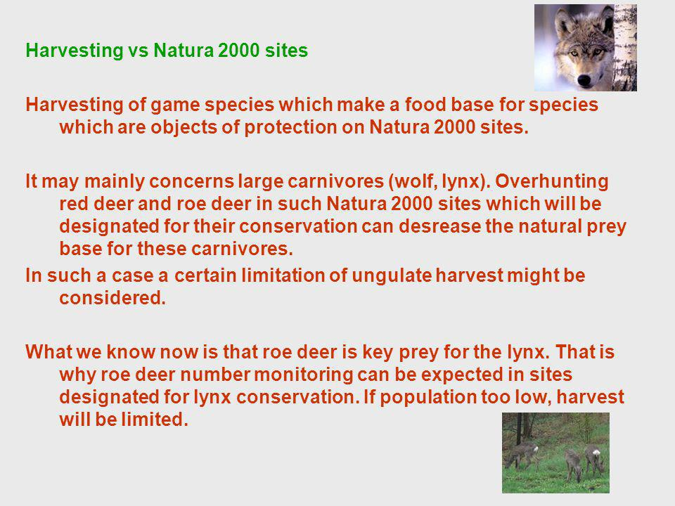 Harvesting vs Natura 2000 sites Harvesting of game species which make a food base for species which are objects of protection on Natura 2000 sites.