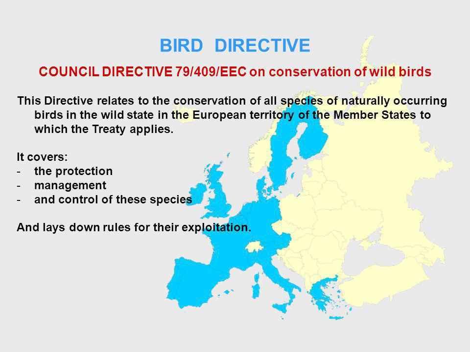 BIRD DIRECTIVE COUNCIL DIRECTIVE 79/409/EEC on conservation of wild birds This Directive relates to the conservation of all species of naturally occurring birds in the wild state in the European territory of the Member States to which the Treaty applies.