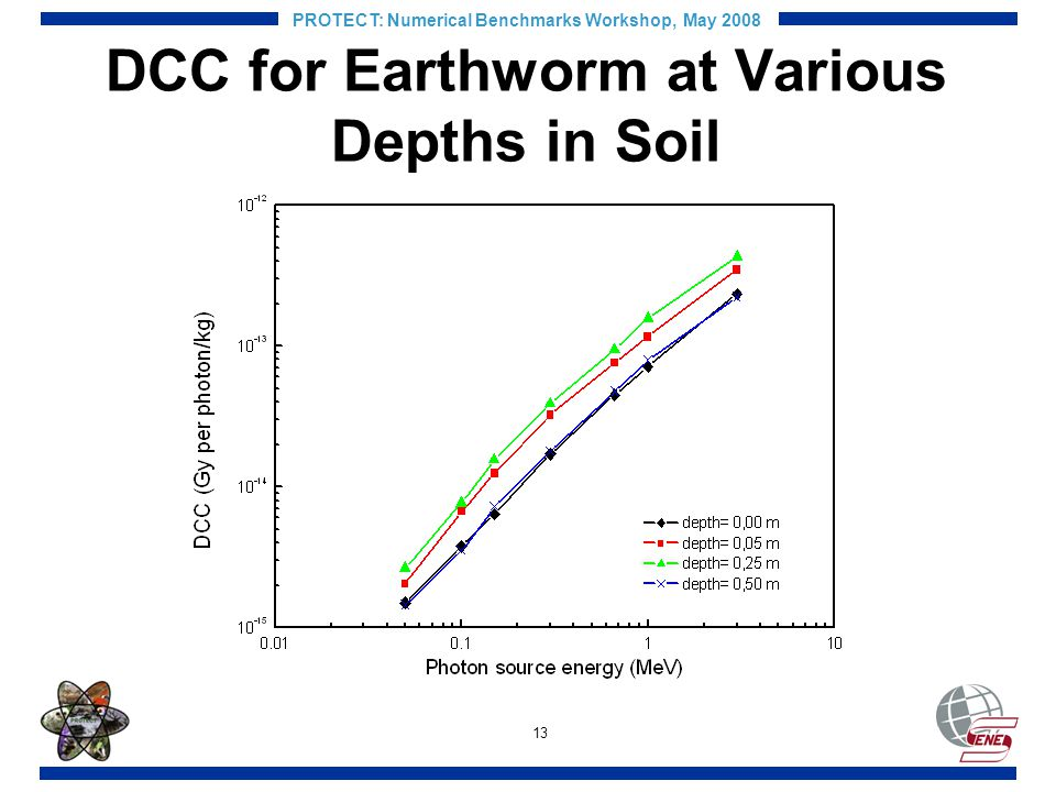 13 PROTECT: Numerical Benchmarks Workshop, May 2008 DCC for Earthworm at Various Depths in Soil