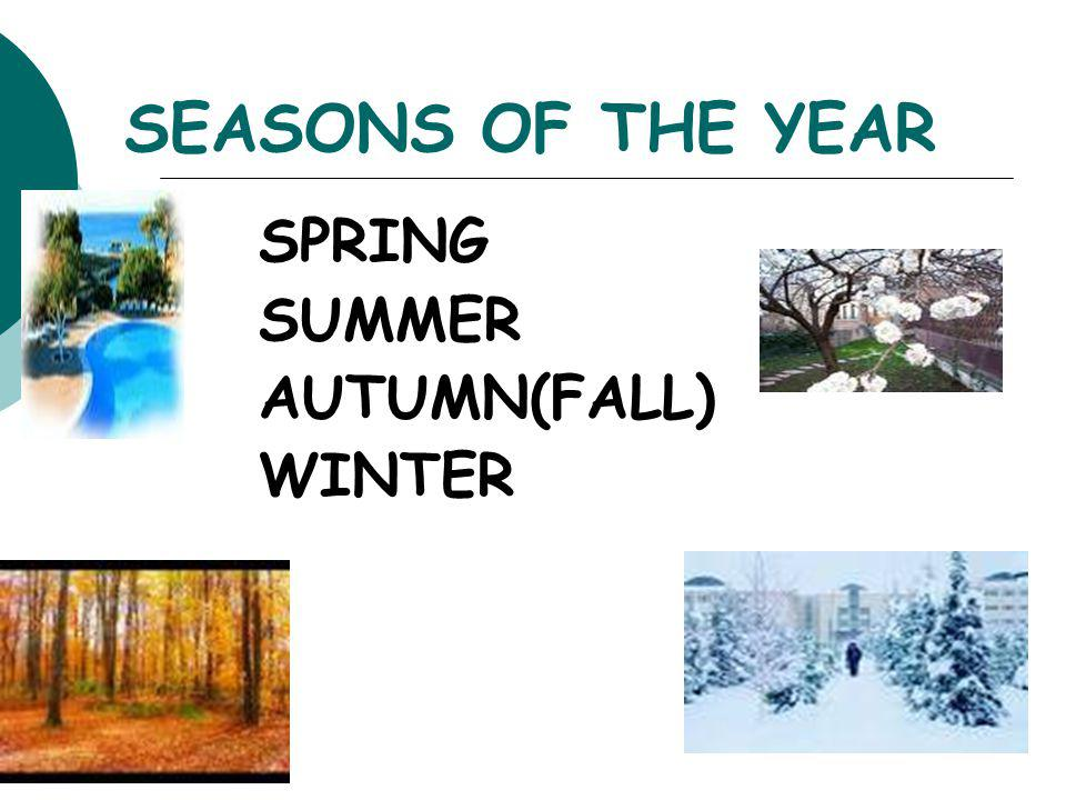SEASONS OF THE YEAR SPRING SUMMER AUTUMN(FALL) WINTER