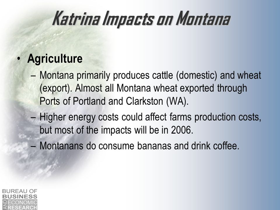 Katrina Impacts on Montana Agriculture –Montana primarily produces cattle (domestic) and wheat (export). Almost all Montana wheat exported through Por