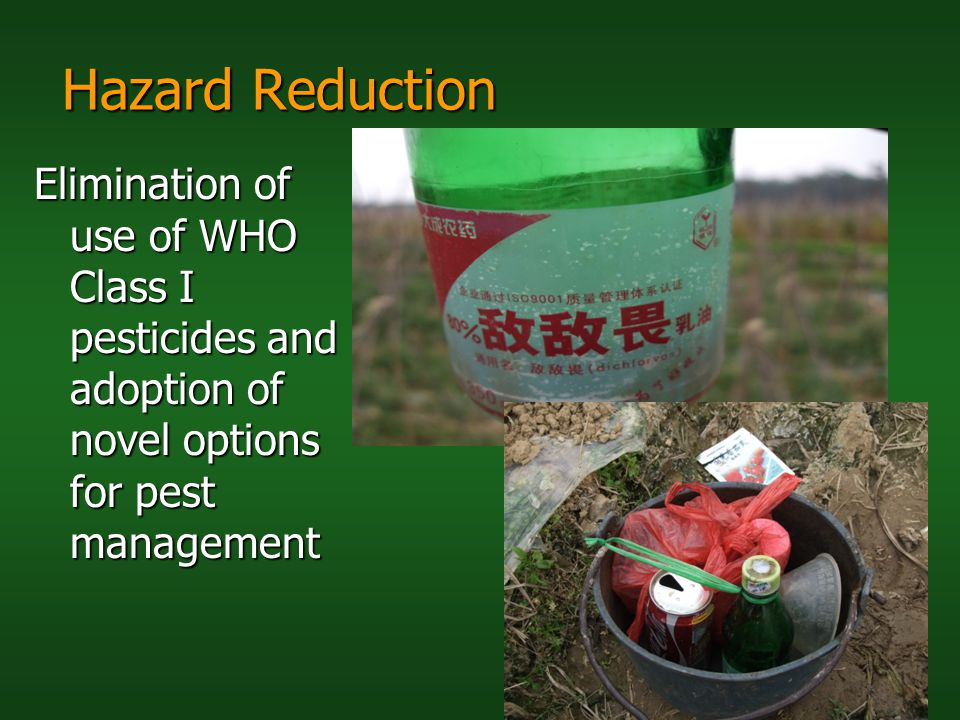 Hazard Reduction Elimination of use of WHO Class I pesticides and adoption of novel options for pest management