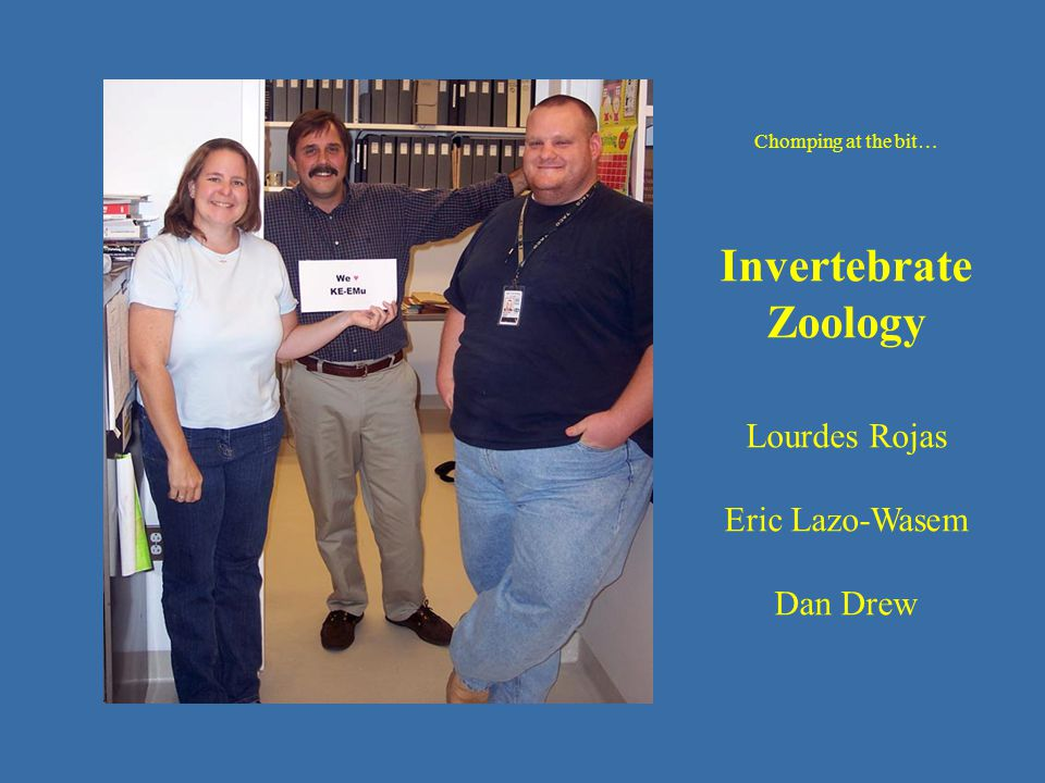 operating in Emu - IZ Chomping at the bit… Invertebrate Zoology Lourdes Rojas Eric Lazo-Wasem Dan Drew