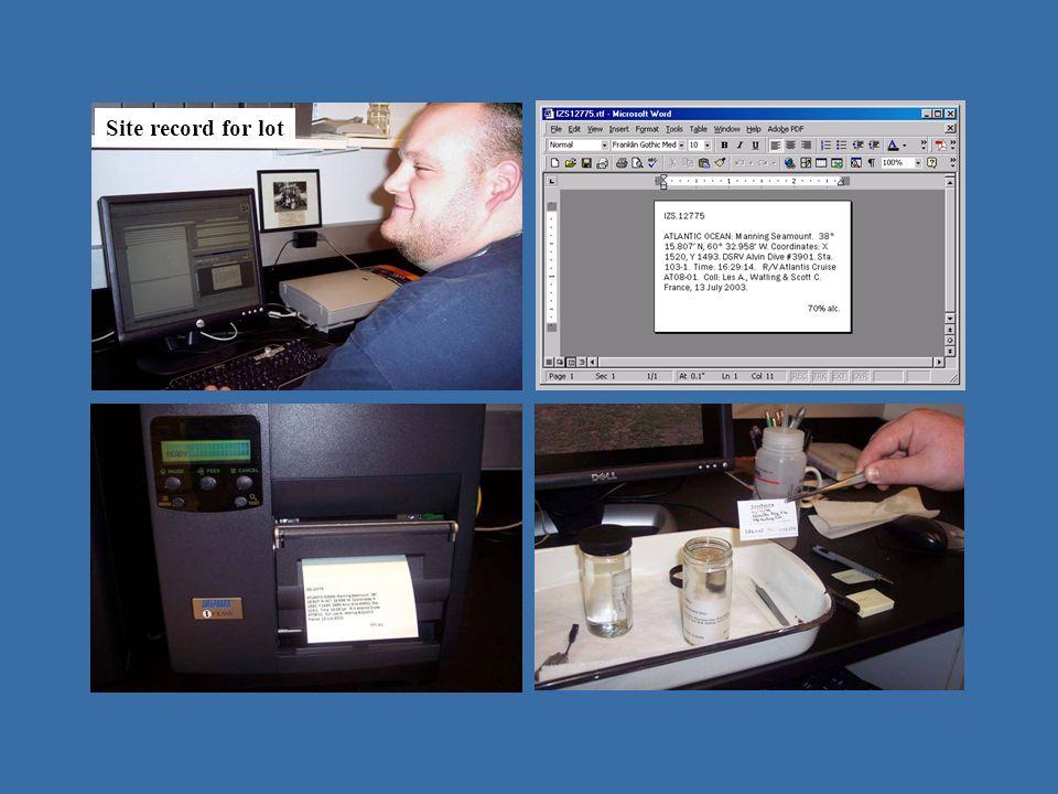 operating in Emu - IZ Site record for lot