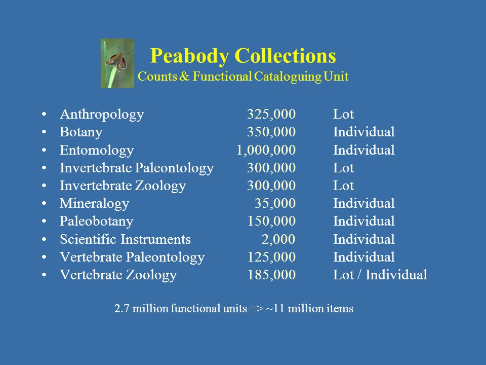 Peabody Collections Functional Units Databased Anthropology 325,000 90 % Botany 350,000 1 % Entomology1,000,000 1 % Invertebrate Paleontology 300,000 55 % Invertebrate Zoology 300,000 20 % Mineralogy 35,000 85 % Paleobotany 150,000 60 % Scientific Instruments 2,000100 % Vertebrate Paleontology 125,000 60 % Vertebrate Zoology 185,000 95 % 930,000 of 2.7 million => 35 % overall
