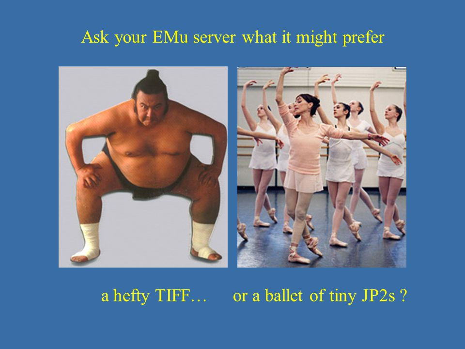 JP2 – size matters a hefty TIFF… or a ballet of tiny JP2s ? Ask your EMu server what it might prefer