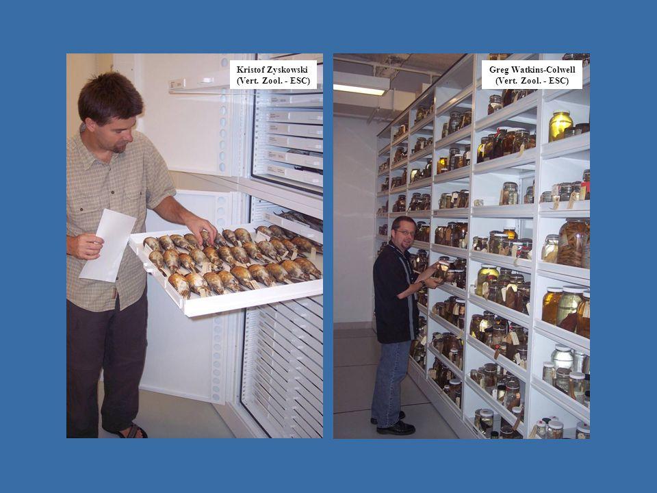 operating in Emu - IZ Site record for lot RTF label