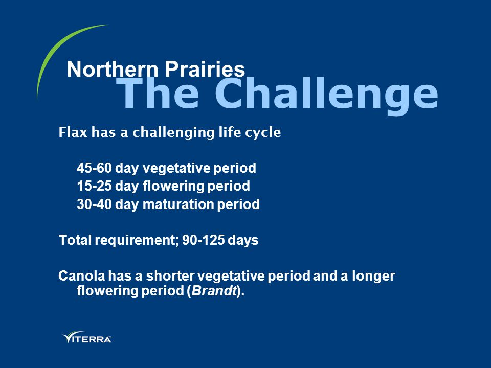 Northern Prairies Flax has a challenging life cycle 45-60 day vegetative period 15-25 day flowering period 30-40 day maturation period Total requirement; 90-125 days Canola has a shorter vegetative period and a longer flowering period (Brandt).