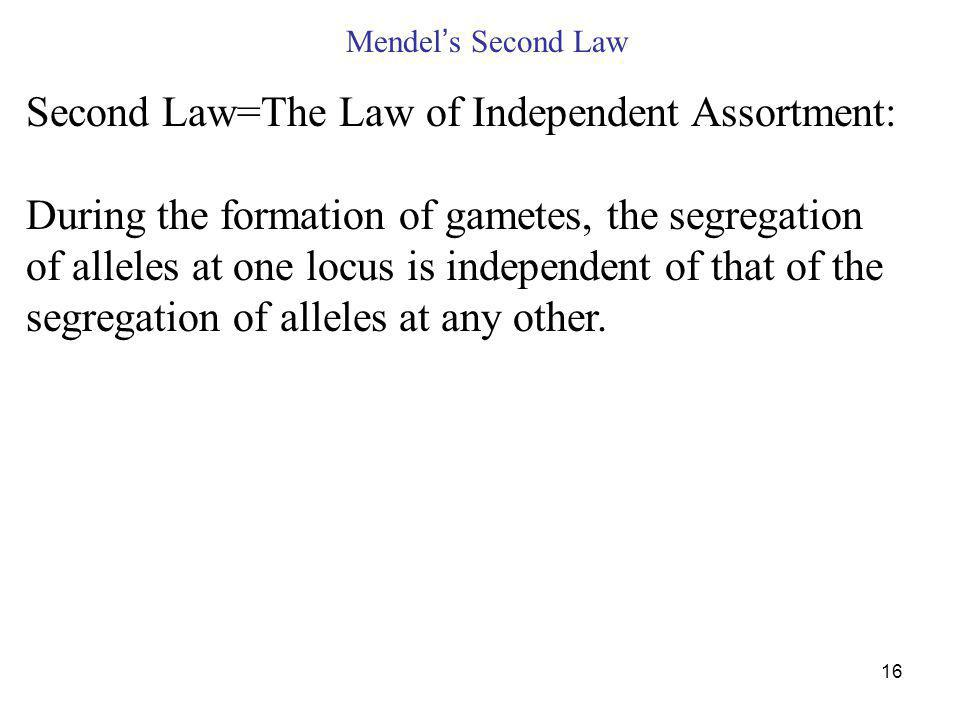 16 Mendel s Second Law Second Law=The Law of Independent Assortment: During the formation of gametes, the segregation of alleles at one locus is independent of that of the segregation of alleles at any other.