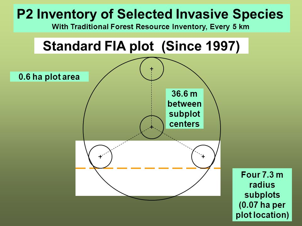 Standard FIA plot (Since 1997) 0.6 ha plot area Four 7.3 m radius subplots (0.07 ha per plot location) 36.6 m between subplot centers P2 Inventory of