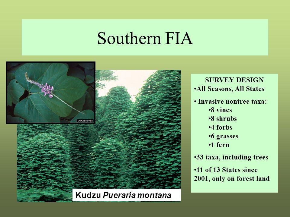 Southern FIA SURVEY DESIGN All Seasons, All States Invasive nontree taxa: 8 vines 8 shrubs 4 forbs 6 grasses 1 fern 33 taxa, including trees 11 of 13