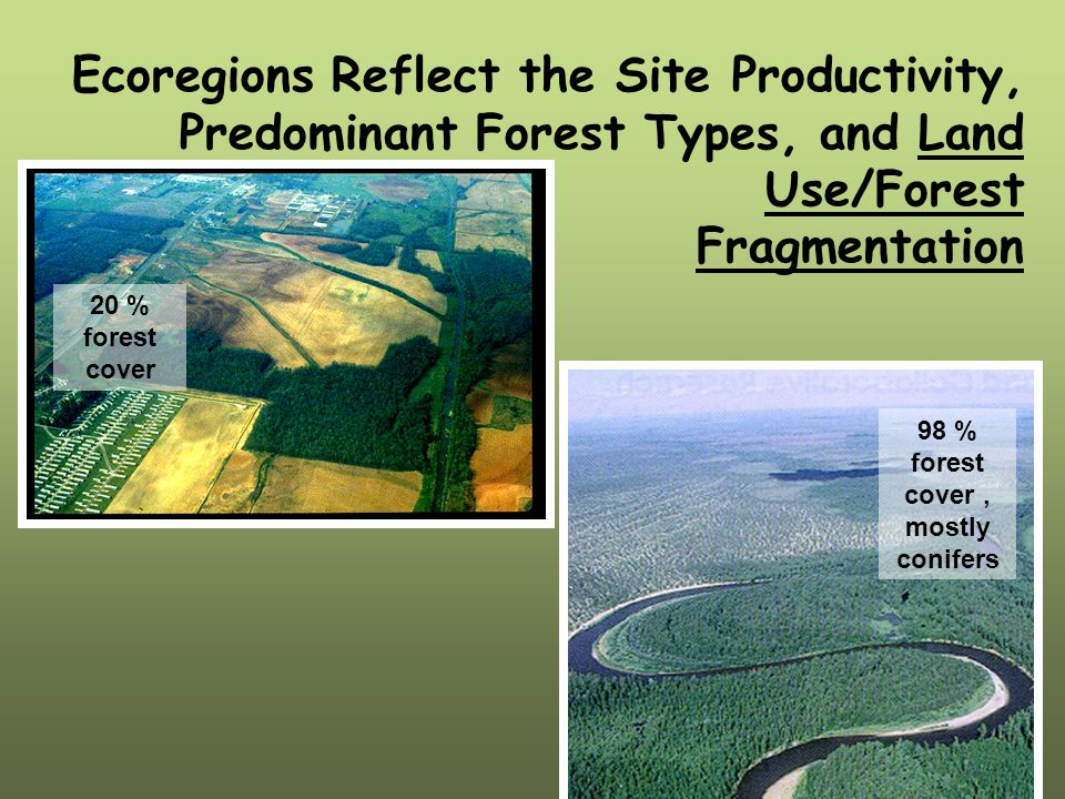 Ecoregions Reflect the Site Productivity, Predominant Forest Types, and Land Use/Forest Fragmentation 20 % forest cover 98 % forest cover, mostly conifers