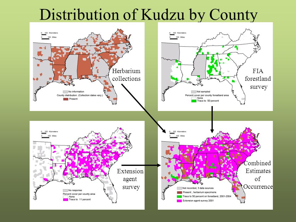 Distribution of Kudzu by County Herbarium collections Extension agent survey FIA forestland survey Combined Estimates of Occurrence
